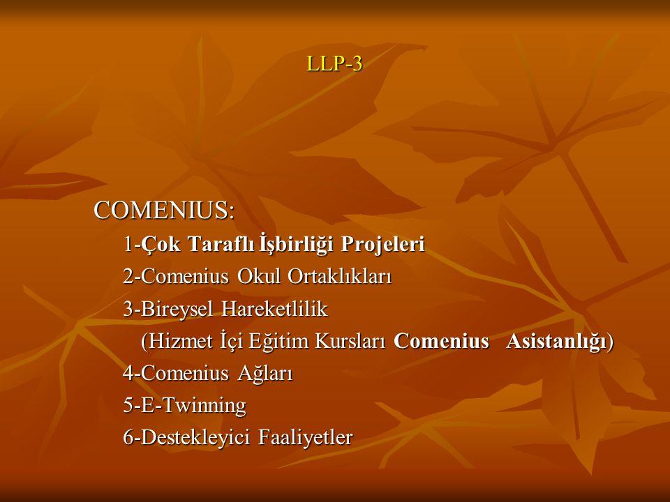 LLP-3 COMENIUS: 1-Çok Taraflı İşbirliği Projeleri 2-Comenius Okul Ortaklıkları 3-Bireysel Hareketlilik (Hizmet İçi Eğitim Kursları Comenius Asistanlığı) (Hizmet İçi Eğitim Kursları Comenius Asistanlığı) 4-Comenius Ağları 5-E-Twinning 6-Destekleyici Faaliyetler