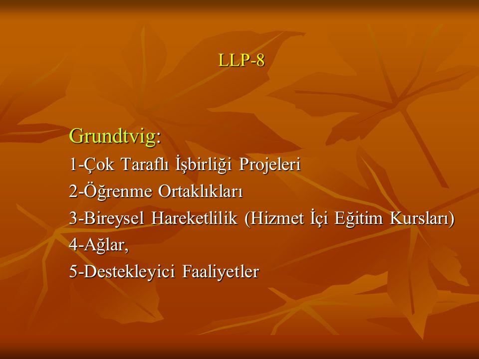 LLP-8 Grundtvig: 1-Çok Taraflı İşbirliği Projeleri 2-Öğrenme Ortaklıkları 3-Bireysel Hareketlilik (Hizmet İçi Eğitim Kursları) 4-Ağlar, 5-Destekleyici Faaliyetler