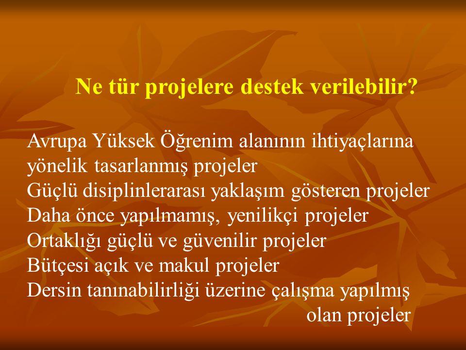 Ne tür projelere destek verilebilir? Avrupa Yüksek Öğrenim alanının ihtiyaçlarına yönelik tasarlanmış projeler Güçlü disiplinlerarası yaklaşım göstere