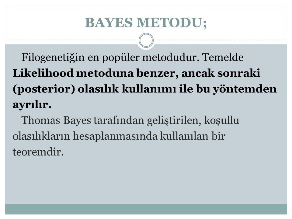 BAYES METODU; Filogenetiğin en popüler metodudur. Temelde Likelihood metoduna benzer, ancak sonraki (posterior) olasılık kullanımı ile bu yöntemden ay