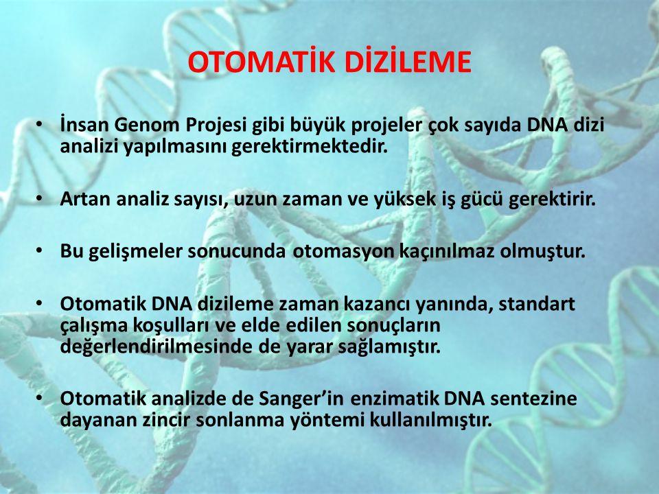 OTOMATİK DİZİLEME İnsan Genom Projesi gibi büyük projeler çok sayıda DNA dizi analizi yapılmasını gerektirmektedir. Artan analiz sayısı, uzun zaman ve
