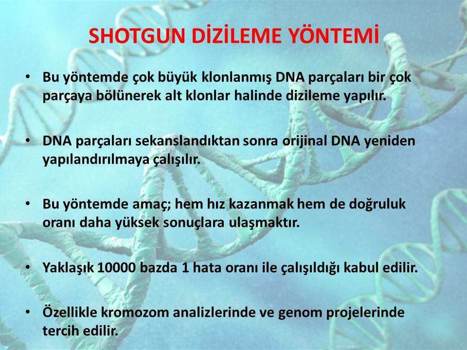 SHOTGUN DİZİLEME YÖNTEMİ Bu yöntemde çok büyük klonlanmış DNA parçaları bir çok parçaya bölünerek alt klonlar halinde dizileme yapılır. DNA parçaları