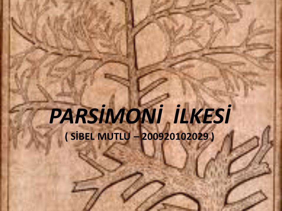 PARSİMONİ İLKESİ ( SİBEL MUTLU – 200920102029 )