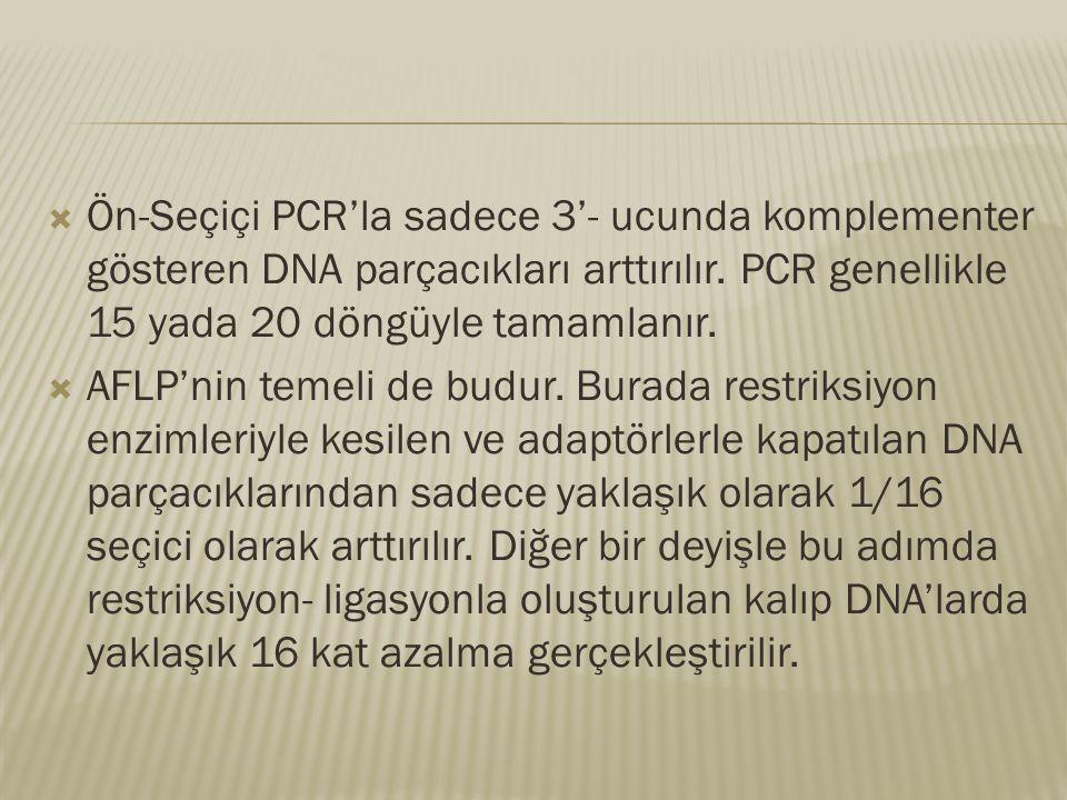  Ön-Seçiçi PCR'la sadece 3'- ucunda komplementer gösteren DNA parçacıkları arttırılır. PCR genellikle 15 yada 20 döngüyle tamamlanır.  AFLP'nin teme