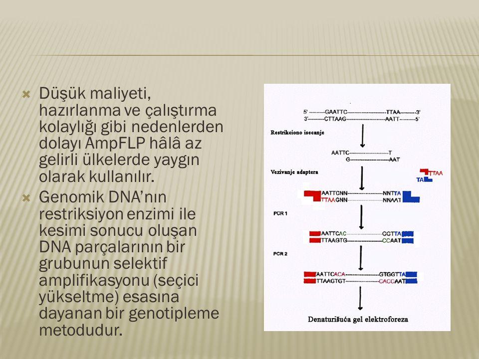  Düşük maliyeti, hazırlanma ve çalıştırma kolaylığı gibi nedenlerden dolayı AmpFLP hâlâ az gelirli ülkelerde yaygın olarak kullanılır.  Genomik DNA'
