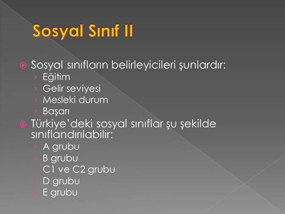  Sosyal sınıfların belirleyicileri şunlardır: › Eğitim › Gelir seviyesi › Mesleki durum › Başarı  Türkiye'deki sosyal sınıflar şu şekilde sınıflandı