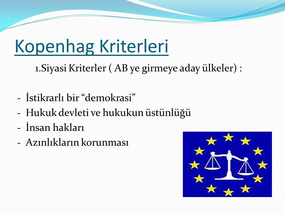"""Kopenhag Kriterleri 1.Siyasi Kriterler ( AB ye girmeye aday ülkeler) : - İstikrarlı bir """"demokrasi"""" - Hukuk devleti ve hukukun üstünlüğü - İnsan hakla"""