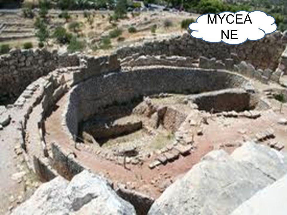 MYCEA NE