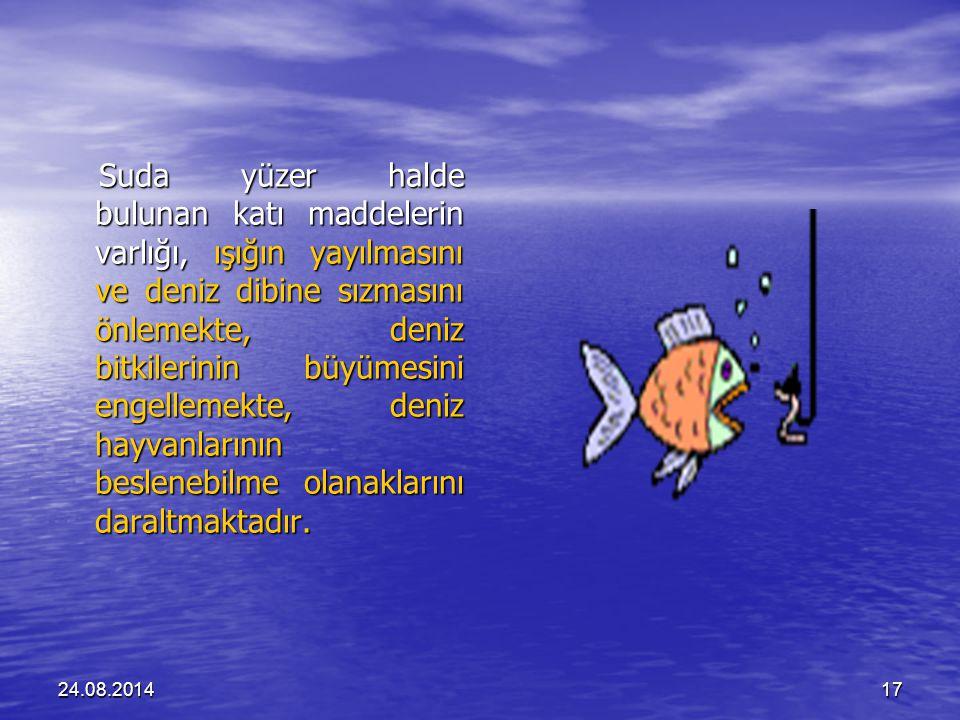 24.08.201417 Suda yüzer halde bulunan katı maddelerin varlığı, ışığın yayılmasını ve deniz dibine sızmasını önlemekte, deniz bitkilerinin büyümesini engellemekte, deniz hayvanlarının beslenebilme olanaklarını daraltmaktadır.