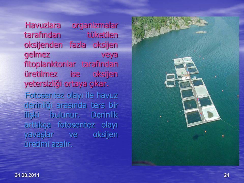 24.08.201424 Havuzlara organizmalar tarafından tüketilen oksijenden fazla oksijen gelmez veya fitoplanktonlar tarafından üretilmez ise oksijen yetersizliği ortaya çıkar.