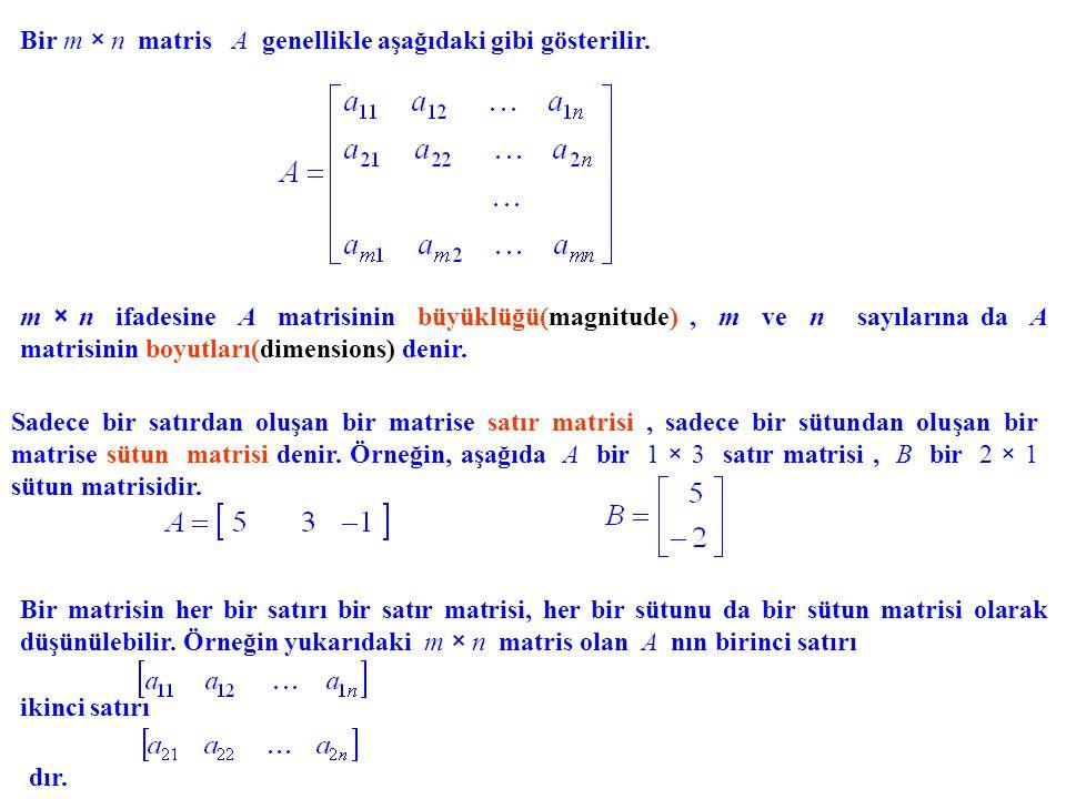 Bir m × n matris A genellikle aşağıdaki gibi gösterilir. m × n ifadesine A matrisinin büyüklüğü(magnitude), m ve n sayılarına da A matrisinin boyutlar