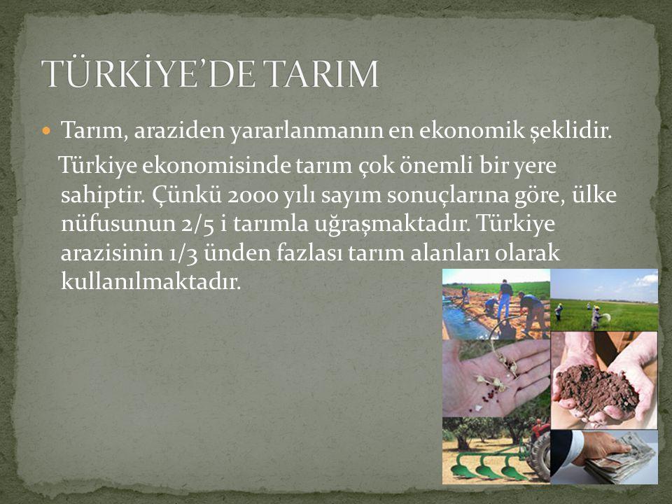 Tarım, araziden yararlanmanın en ekonomik şeklidir. Türkiye ekonomisinde tarım çok önemli bir yere sahiptir. Çünkü 2000 yılı sayım sonuçlarına göre, ü
