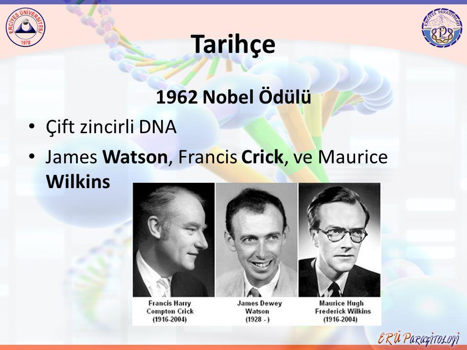 Tarihçe 1962 Nobel Ödülü Çift zincirli DNA James Watson, Francis Crick, ve Maurice Wilkins