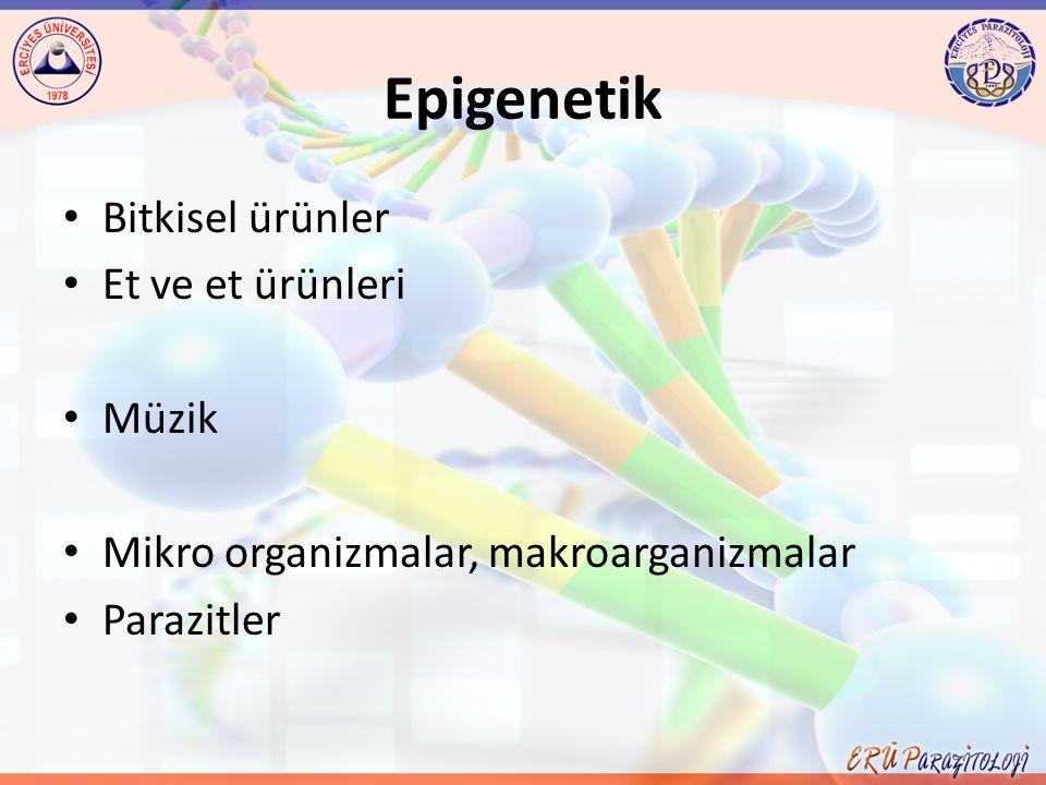 Epigenetik Bitkisel ürünler Et ve et ürünleri Müzik Mikro organizmalar, makroarganizmalar Parazitler