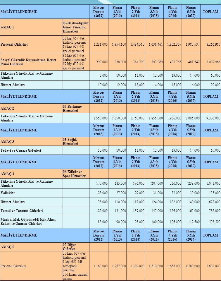 MALİYETLENDİRME Mevcut Durum (2012) Planın 1.Yılı (2013) Planın 2.Yılı (2014) Planın 3.Yılı (2015) Planın 4.Yılı (2016) Planın 5.Yılı (2017) TOPLAM AM