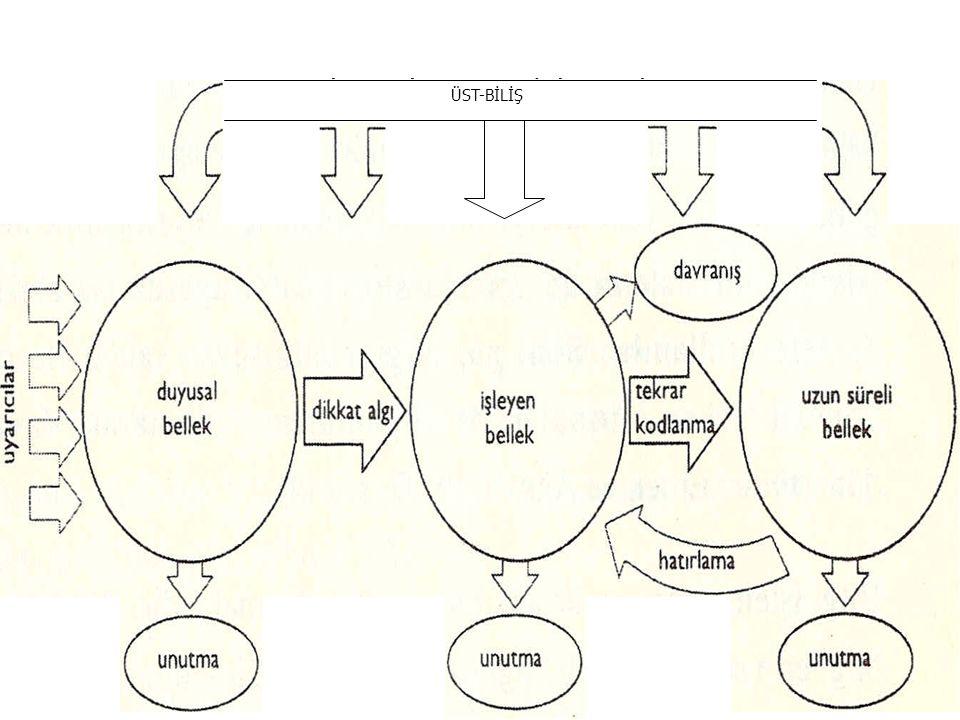 13 Bilgiyi işleme modelinin işleyişi ÜST-BİLİŞ