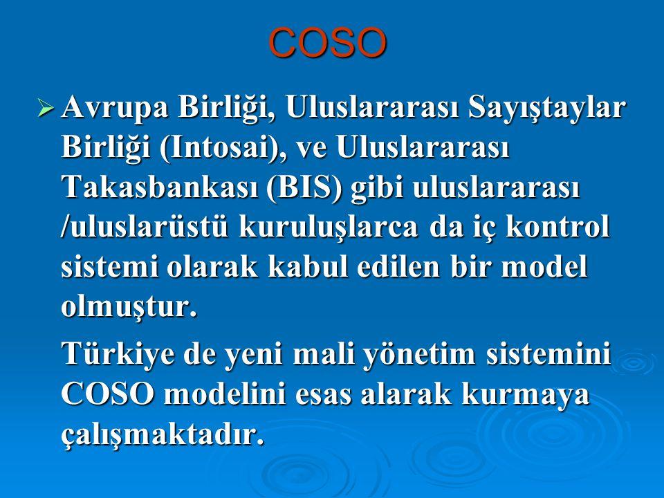 COSO  Avrupa Birliği, Uluslararası Sayıştaylar Birliği (Intosai), ve Uluslararası Takasbankası (BIS) gibi uluslararası /uluslarüstü kuruluşlarca da i