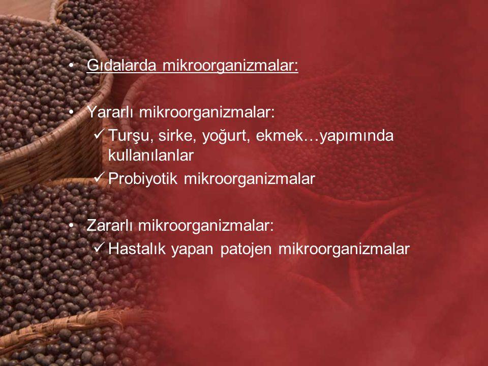 Gıdalarda mikroorganizmalar: Yararlı mikroorganizmalar: Turşu, sirke, yoğurt, ekmek…yapımında kullanılanlar Probiyotik mikroorganizmalar Zararlı mikro