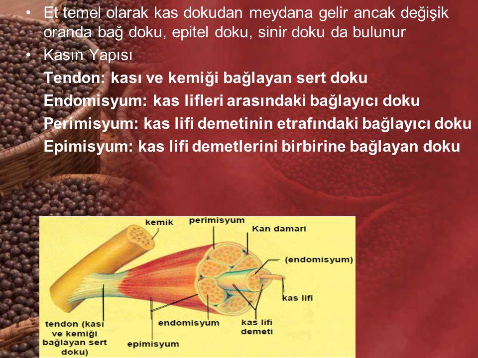 Et temel olarak kas dokudan meydana gelir ancak değişik oranda bağ doku, epitel doku, sinir doku da bulunur Kasın Yapısı Tendon: kası ve kemiği bağlay