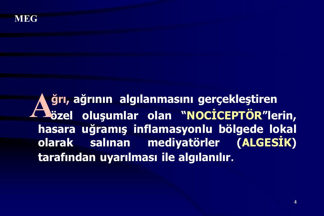 """4 ğrı, ağrının algılanmasını gerçekleştiren özel oluşumlar olan """"NOCİCEPTÖR""""lerin, hasara uğramış inflamasyonlu bölgede lokal olarak salınan mediyatör"""
