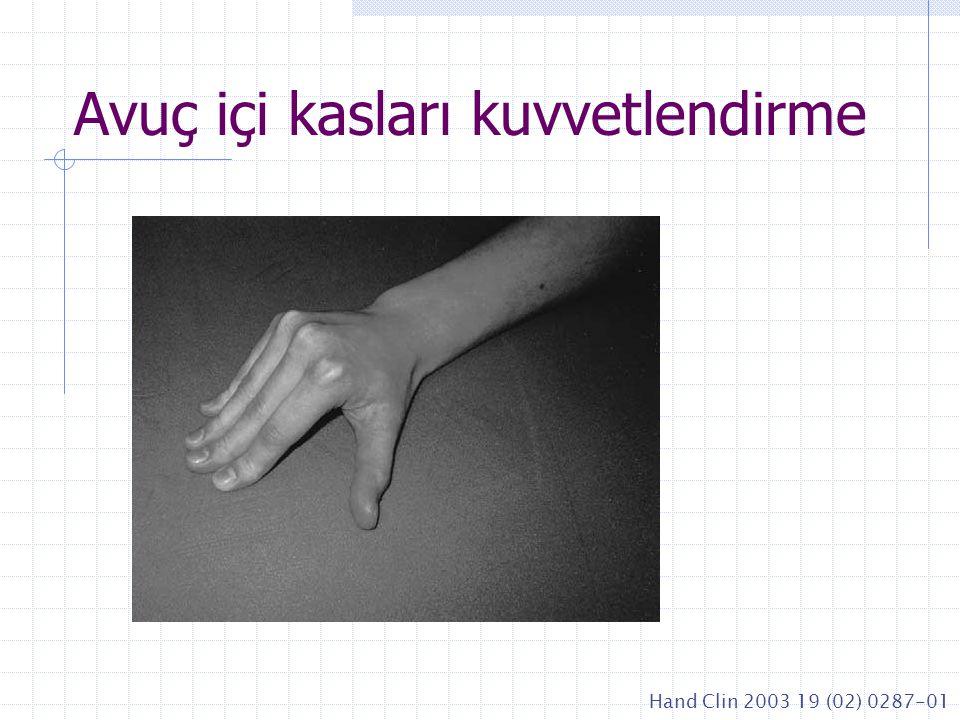 Avuç içi kasları kuvvetlendirme Hand Clin 2003 19 (02) 0287-01