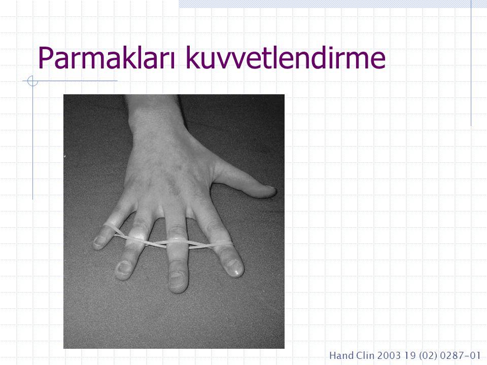 Parmakları kuvvetlendirme Hand Clin 2003 19 (02) 0287-01