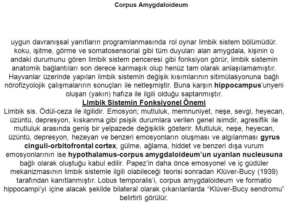 Corpus Amygdaloideum uygun davranışsal yanıtların programlanmasında rol oynar limbik sistem bölümüdür. koku, işitme, görme ve somatosensorial gibi tüm