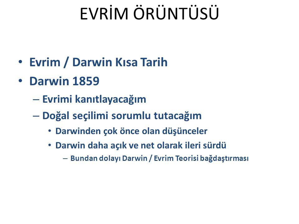 Evrim / Darwin Kısa Tarih Darwin 1859 – Evrimi kanıtlayacağım – Doğal seçilimi sorumlu tutacağım Darwinden çok önce olan düşünceler Darwin daha açık ve net olarak ileri sürdü – Bundan dolayı Darwin / Evrim Teorisi bağdaştırması EVRİM ÖRÜNTÜSÜ