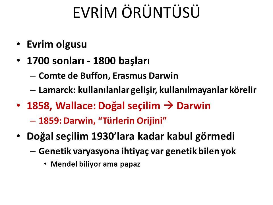 Evrim olgusu 1700 sonları - 1800 başları – Comte de Buffon, Erasmus Darwin – Lamarck: kullanılanlar gelişir, kullanılmayanlar körelir 1858, Wallace: Doğal seçilim  Darwin – 1859: Darwin, Türlerin Orijini Doğal seçilim 1930'lara kadar kabul görmedi – Genetik varyasyona ihtiyaç var genetik bilen yok Mendel biliyor ama papaz EVRİM ÖRÜNTÜSÜ
