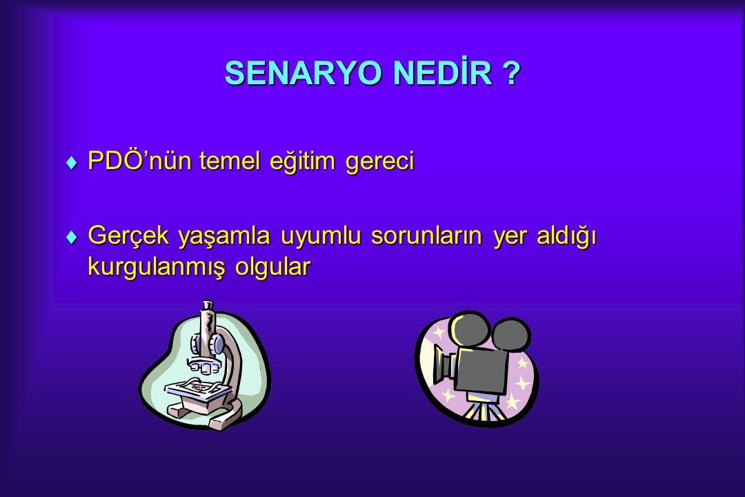NASIL BİR KURGU .