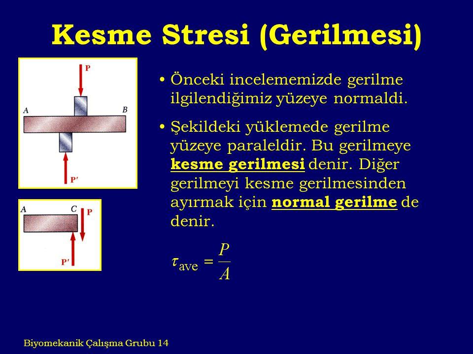 Kesme Stresi (Gerilmesi) Biyomekanik Çalışma Grubu 14 Önceki incelememizde gerilme ilgilendiğimiz yüzeye normaldi. Şekildeki yüklemede gerilme yüzeye