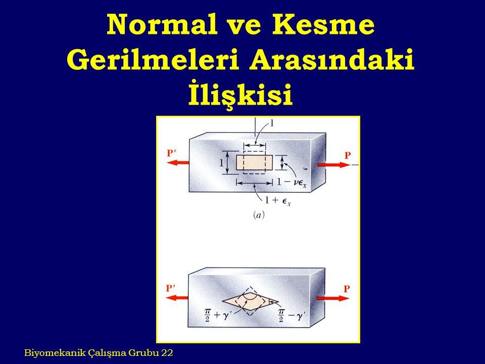 Normal ve Kesme Gerilmeleri Arasındaki İlişkisi Biyomekanik Çalışma Grubu 22
