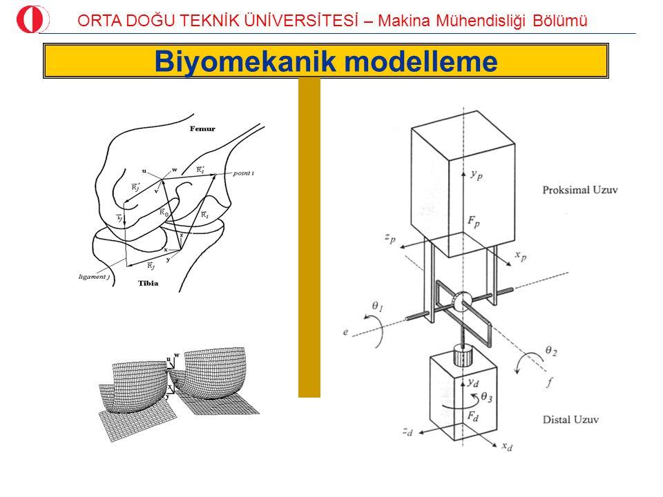 ORTA DOĞU TEKNİK ÜNİVERSİTESİ – Makina Mühendisliği Bölümü Biyomekanik modelleme
