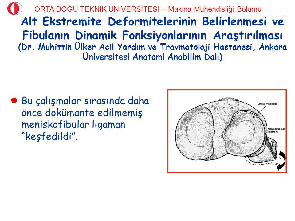 ORTA DOĞU TEKNİK ÜNİVERSİTESİ – Makina Mühendisliği Bölümü Alt Ekstremite Deformitelerinin Belirlenmesi ve Fibulanın Dinamik Fonksiyonlarının Araştırı