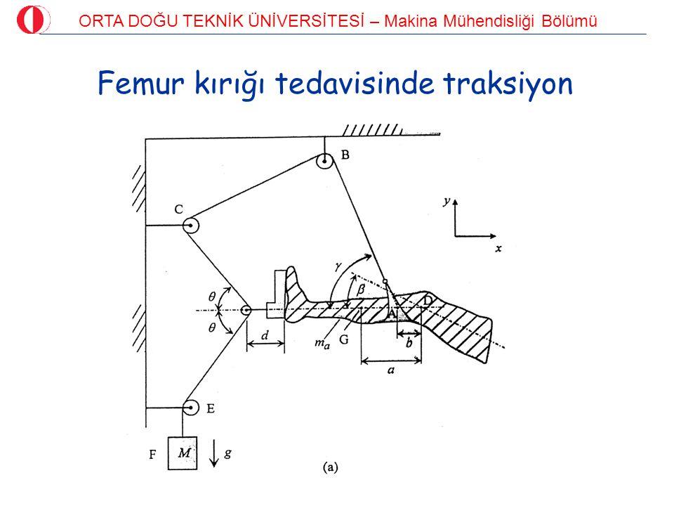 ORTA DOĞU TEKNİK ÜNİVERSİTESİ – Makina Mühendisliği Bölümü Yük kaldırmada L5/S1 eklem kuvveti