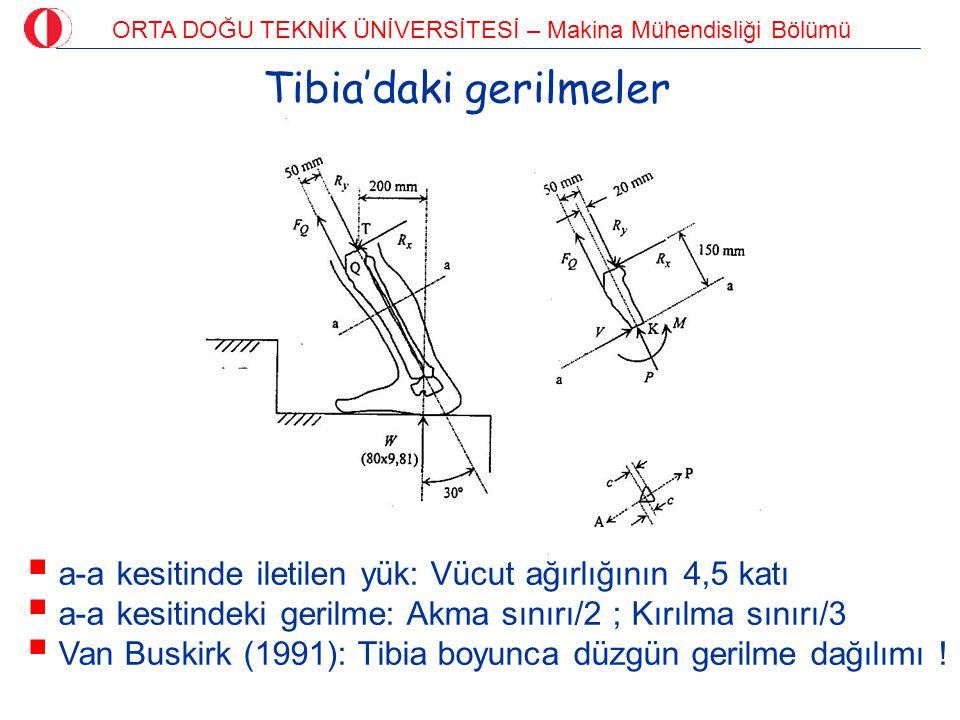 ORTA DOĞU TEKNİK ÜNİVERSİTESİ – Makina Mühendisliği Bölümü Tibia'daki gerilmeler  a-a kesitinde iletilen yük: Vücut ağırlığının 4,5 katı  a-a kesiti