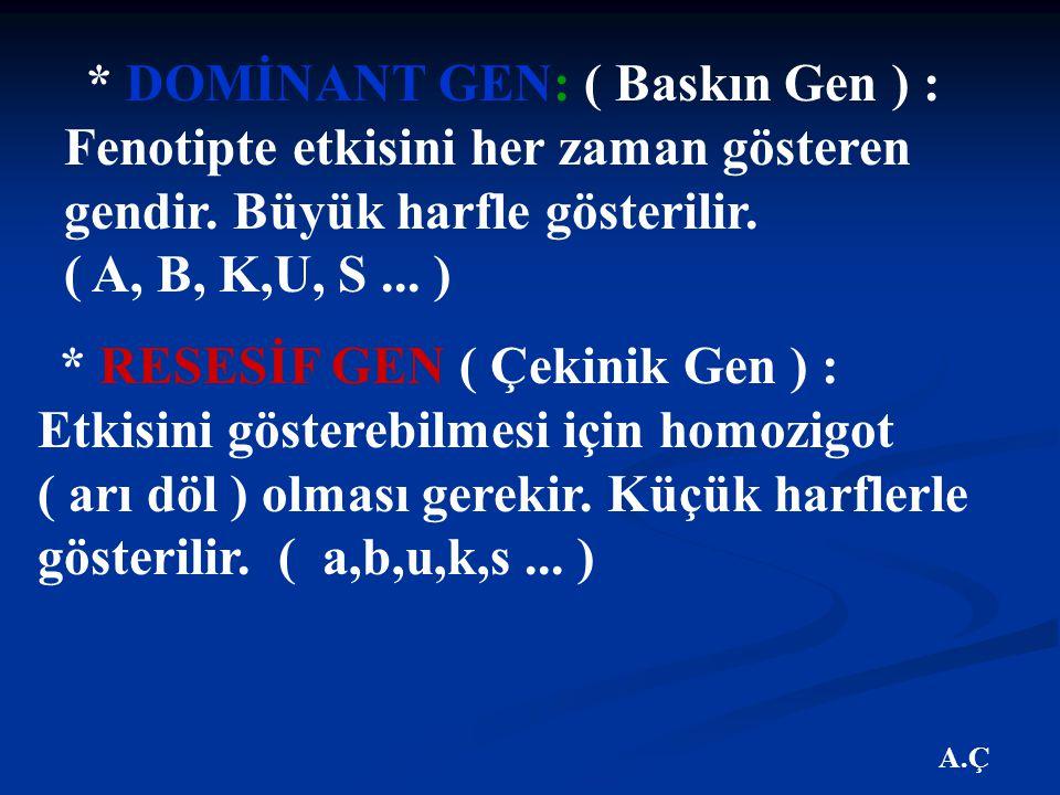 A.Ç * DOMİNANT GEN: ( Baskın Gen ) : Fenotipte etkisini her zaman gösteren gendir.