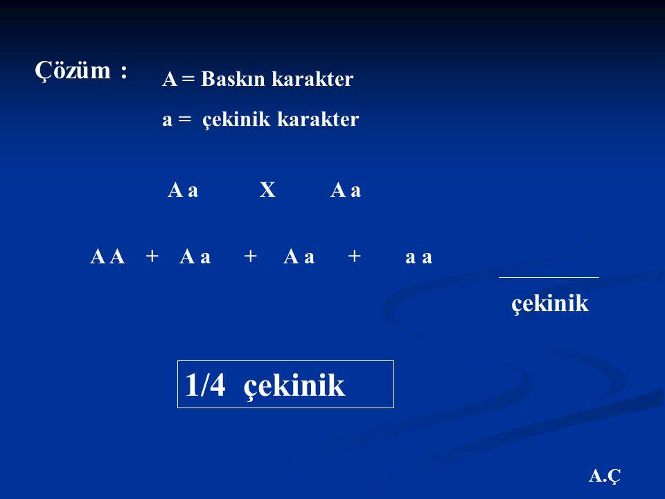 A.Ç Çözüm : A = Baskın karakter a = çekinik karakter A a X A a A A + A a + A a + a a çekinik 1/4 çekinik