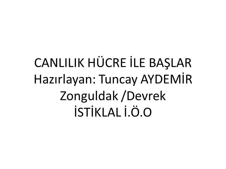 CANLILIK HÜCRE İLE BAŞLAR Hazırlayan: Tuncay AYDEMİR Zonguldak /Devrek İSTİKLAL İ.Ö.O
