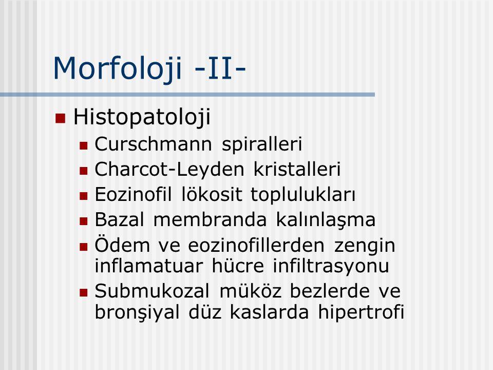 Morfoloji -II- Histopatoloji Curschmann spiralleri Charcot-Leyden kristalleri Eozinofil lökosit toplulukları Bazal membranda kalınlaşma Ödem ve eozino