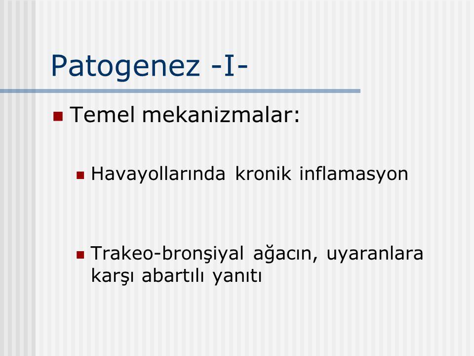 Patogenez -II- Atopik astma: En sık görülen tip Başlangıç: Çocukluk dönemi Çevresel antijenler (toz, polenler, yiyecekler...) Ailesel atopi Diğer allerjik hastalıklar (allerjik rinit, ürtiker ve ekzama...)