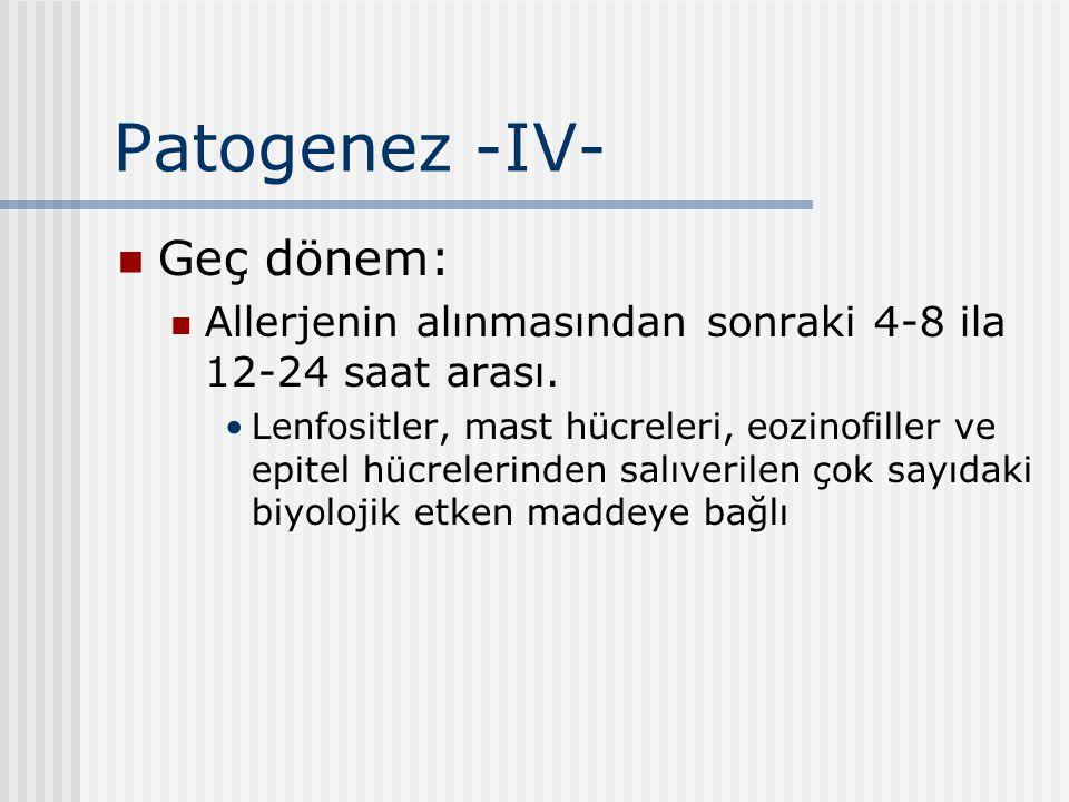 Patogenez -IV- Geç dönem: Allerjenin alınmasından sonraki 4-8 ila 12-24 saat arası. Lenfositler, mast hücreleri, eozinofiller ve epitel hücrelerinden