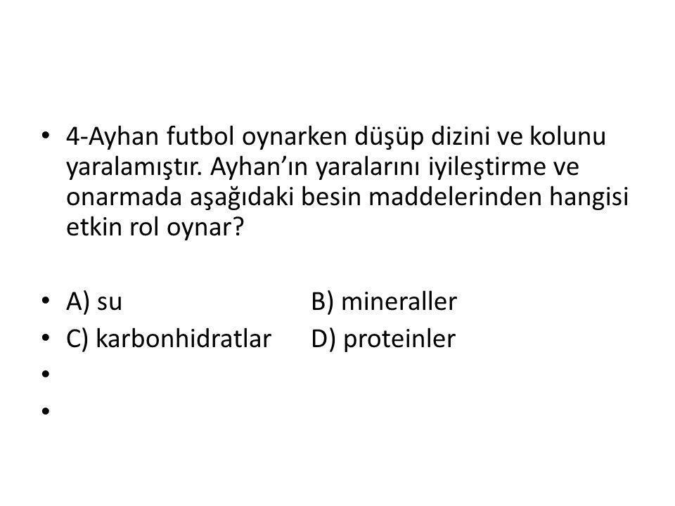 4-Ayhan futbol oynarken düşüp dizini ve kolunu yaralamıştır.