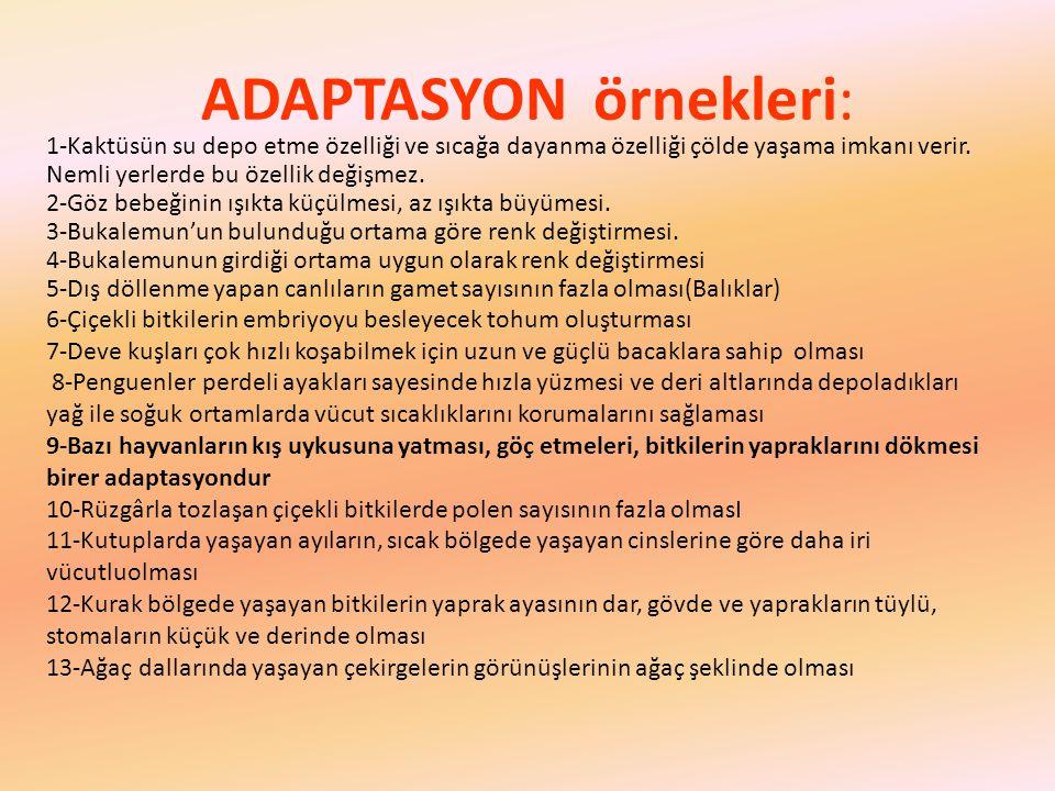 ADAPTASYON örnekleri: 1-Kaktüsün su depo etme özelliği ve sıcağa dayanma özelliği çölde yaşama imkanı verir.