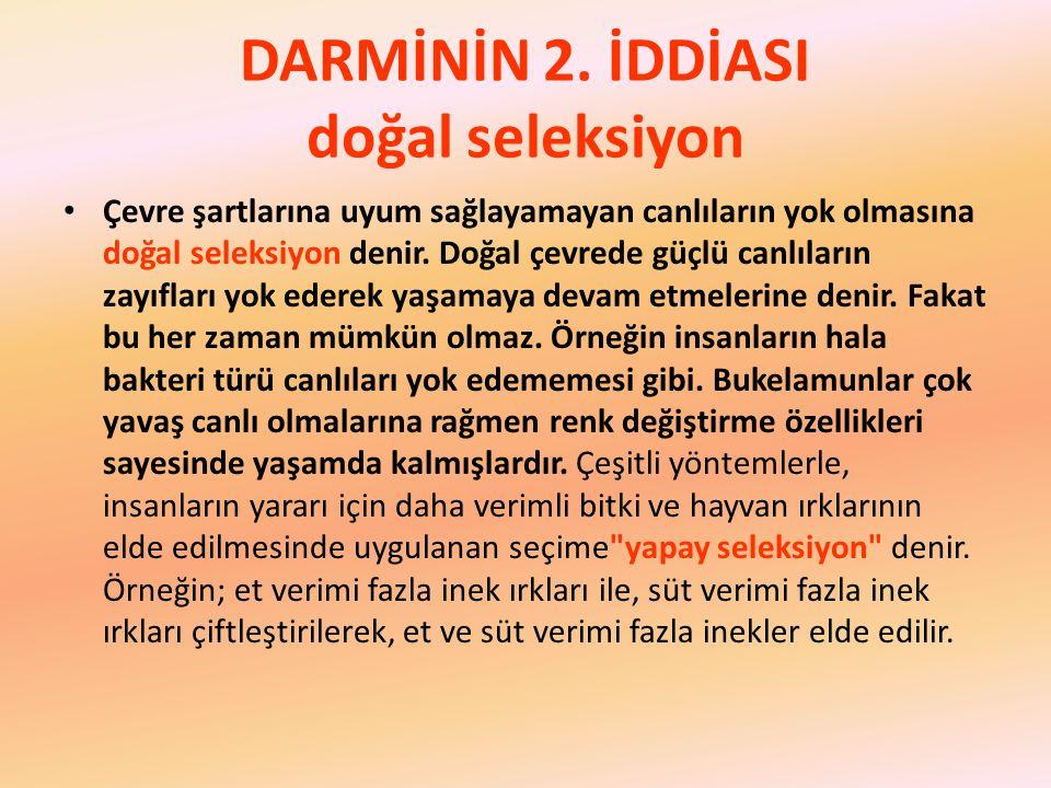 DARMİNİN 2.