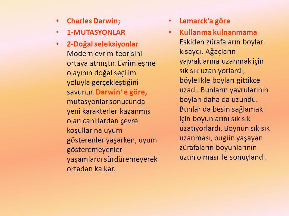 Charles Darwin; 1-MUTASYONLAR 2-Doğal seleksiyonlar Modern evrim teorisini ortaya atmıştır.