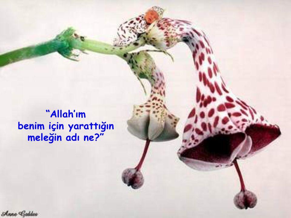 """""""Allah'ım benim için yarattığın meleğin adı ne?"""""""