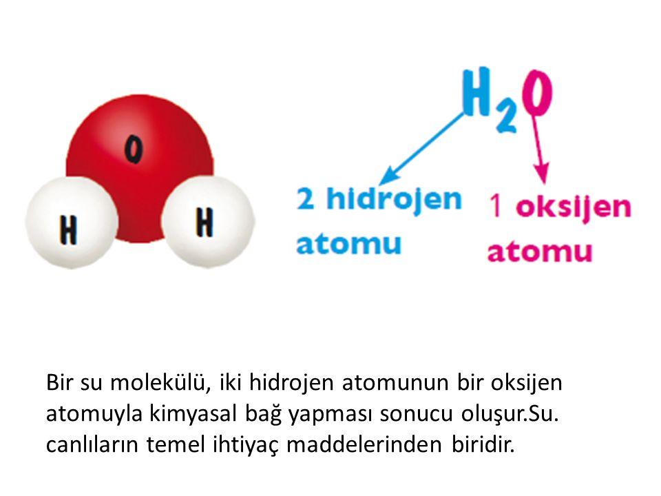 Bir su molekülü, iki hidrojen atomunun bir oksijen atomuyla kimyasal bağ yapması sonucu oluşur.Su.