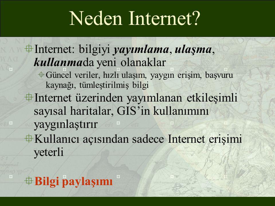 Neden Internet?  Internet: bilgiyi yayımlama, ulaşma, kullanmada yeni olanaklar  Güncel veriler, hızlı ulaşım, yaygın erişim, başvuru kaynağı, tümle