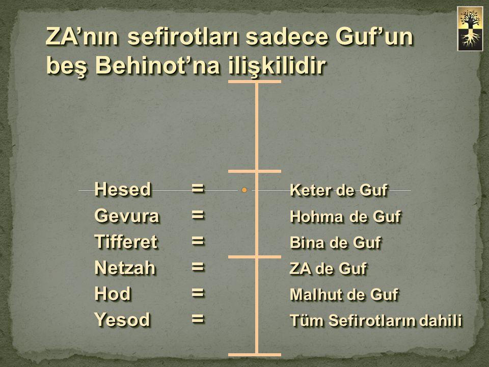 ZA'nın sefirotları sadece Guf'un beş Behinot'na ilişkilidir Hesed = Keter de Guf Gevura = Hohma de Guf Tifferet = Bina de Guf Netzah = ZA de Guf Hod =